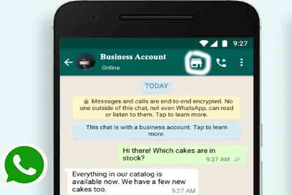 WhatsApp business account shopping button